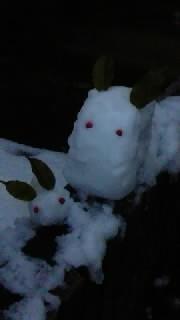 奈良、大雪!